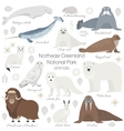 Arctic animal set White polar bear narwhal vector image vector image