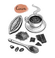 cocoa and chocolate set vector image