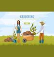 couple doing gardening work vector image vector image