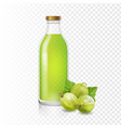 isolated gooseberry juice in glass bottle vector image vector image