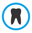 Tooth Rounded Icon vector image vector image