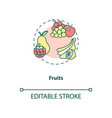 fruits concept icon vector image