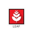 growth leaf logo icon leaf in red square concept vector image vector image