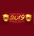 happy chineze new 2019 year invitation card vector image