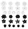 jasmine flower icon set on white background vector image vector image