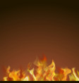 red and yellow burning fire vector image vector image