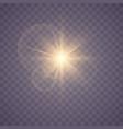 set of glowing stars vector image