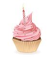 Birthday Candle Cupcake vector image
