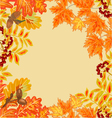 Frame from autumn leaves rowan berry and maple vector image