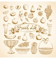Sketches of juicy fresh fruits vector image