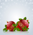Christmas balls with holly vector image