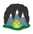 cute toad in the landscape on the night vector image