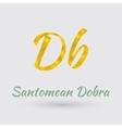 Golden Santomean Dobra Symbol vector image vector image