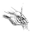 hand sketch washing hands vector image vector image