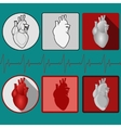 Human heart icon with cardiogram - vector image