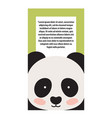 panda animal cover and text vector image vector image