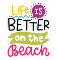 summer lettering composition with decor vector image vector image