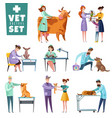 vet doctors and animals set vector image