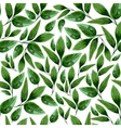 Watercolor Floral Leaf Seamless Pattern vector image vector image