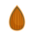 almond in shell icon flat style vector image