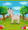 cartoon happy goat smile in the farm vector image vector image