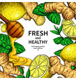 honey ginger lemon and mint frame drawing vector image