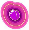 purple plum vector image
