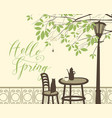 spring street cafe under tree with cat and spider vector image vector image