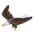 freedom eagle icon isometric style vector image vector image