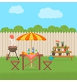House backyard with grill vector image