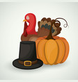 pumpkin turkey and hat of thanks given design vector image