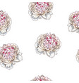 seamless pattern with gently pink peony flower vector image