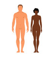 man and womanhuman front side silhouette isolated vector image