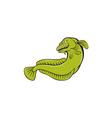 Burbot Fish Angry Cartoon vector image vector image