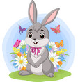 cute barabbit standing in grass vector image vector image