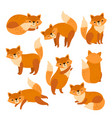 fox characters cute cartoon red foxes funny vector image vector image
