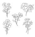 hand drawn botanical flowers black outline vector image vector image