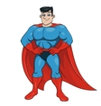 Handsome smiling superhero 4 vector image