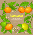 mandarin branches frame on color background vector image vector image