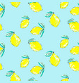seamless citrus pattern hand drawn sketched vector image