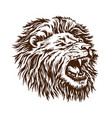 sketch lion head the grin open mouth beast is vector image