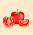 tomato vegetables half and slice vector image