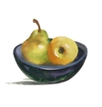 Watercolor still life with pear and apple on plate vector image vector image