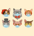 cat in face mask cute heads cats vector image
