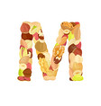 delicious letter made from different nuts m vector image vector image