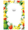 mixed tropical fruits frame border vector image