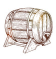 sketch of beer barrel vector image vector image