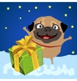 Christmas present from the happy pug vector image