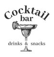 cocktail bar vintage label and glass vector image