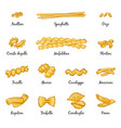 macaroni spaghetti and others type of italian vector image vector image